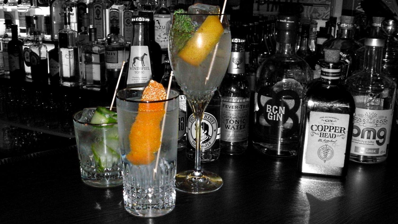 Gläser für Gin & Tonic